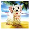Puppy - Fluke