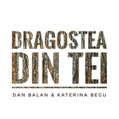 Dragostea Din Tei - Dan Balan & Katerina Begu
