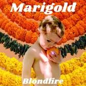 Blondfire - Marigold