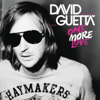 David Guetta - One More Love  arte