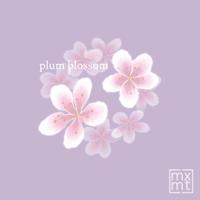 mxmtoon - plum blossum artwork
