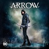 Arrow, Seasons 1-7 - Synopsis and Reviews