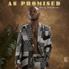 King Promise - Commando artwork