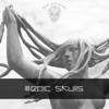Epic Skulls - Various Artists