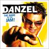 Danzel - Pump It Up (Radio Edit) artwork