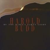 Harold Budd - Boy About 10