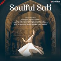 Ustad Sultan Khan - Soulful Sufi artwork
