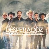 Los Desperadoz - Anhelo