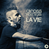 DJ Ross - La Vie (feat. Kumi) [DJ Ross & Alessandro Viale Radio Edit] artwork