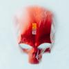 Leben vor dem Tod feat Monchi - Sido mp3