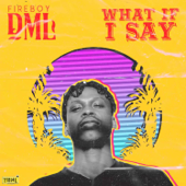 What If I Say Fireboy DML - Fireboy DML