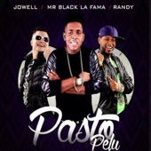 Pasto Pelu artwork