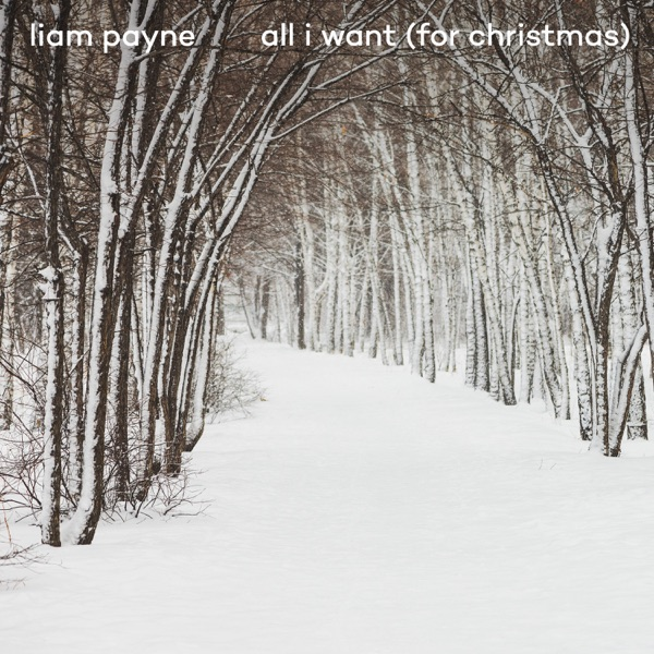 Cover art for All I Want For Christmas