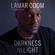 Lamar Odom & Chris Palmer - contributor - Darkness to Light: A Memoir (Unabridged)