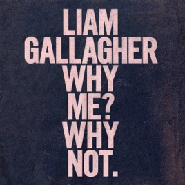 Liam Gallagher - Why Me? Why Not. (Deluxe Edition) (2019) LEAK ALBUM