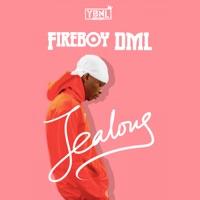 Fireboy DML - Jealous - Single