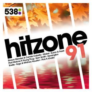 Verschillende artiesten - 538 Hitzone 91