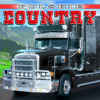 Polskie Country, Vol. 1 - Various Artists