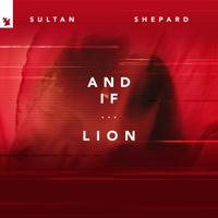 Sultan & Shepard - Lion artwork