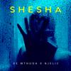 Shesha - De Mthuda & Njelic mp3