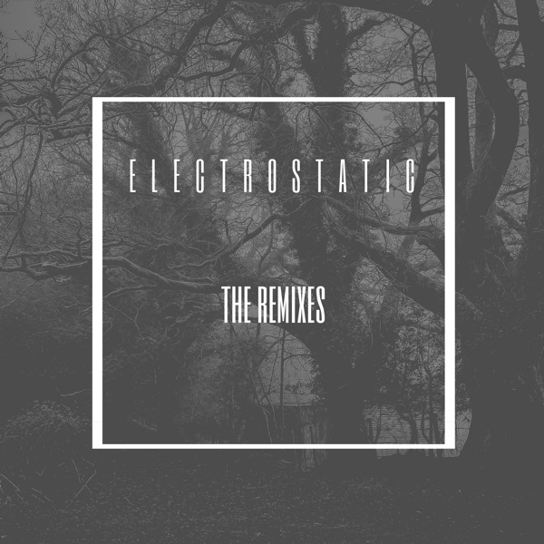 Electrostatic: The Remixes - EP