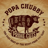 Popa Chubby - I Can't See the Light of Day