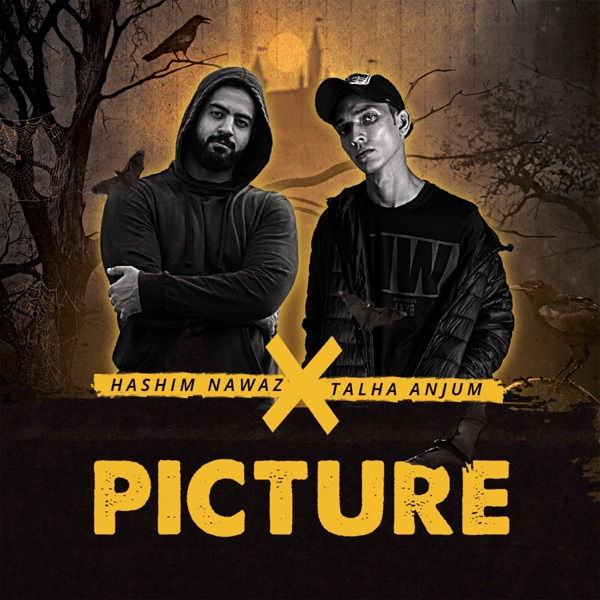 Picture (feat. Talha Anjum) - Single