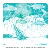 Silver Recovery - Single