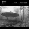 Space Radiance - Storm Area 51 artwork