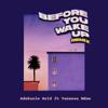 Adekunle Gold - Before You Wake Up (feat. Vanessa Mdee) [Remix] artwork