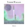 Tandem Wallace - Apollo artwork