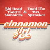 Big Head Todd & the Monsters/Toad The Wet Sprocket - Cinnamon Girl