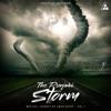 The Punjabi Storm Single