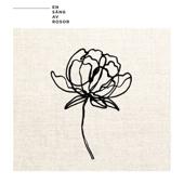 En säng av rosor - Darin