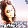 Best of Naseebo Lal