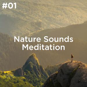 Sleep Sounds of Nature, BodyHI & Nature Sound Collection - #01 Nature Sounds Meditation