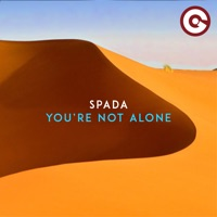 You're Not Alone! - SPADA