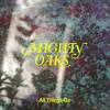 Mighty Oaks - All Things Go Grafik