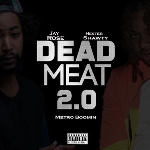 Dead Meat 2.0 (feat. Metro Boomin) - Single Mp3 Download