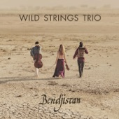 Wild Strings Trio - Who Knows Where