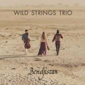 Wild Strings Trio - Who Knows Where