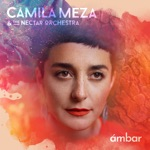 Camila Meza & The Nectar Orchestra - This is Not America