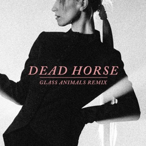 Hayley Williams - Dead Horse (Glass Animals Remix)
