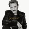 Diego libre dans sa tête - Johnny Hallyday mp3