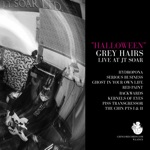 Grey Hairs - Ghost in Your Own Life