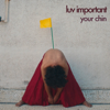 Luv Important - Your Chin mp3