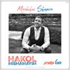 Mordechai Shapiro - Hakol Mishamayim  artwork