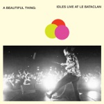 IDLES - Danny Nedelko (Live at Le Bataclan)