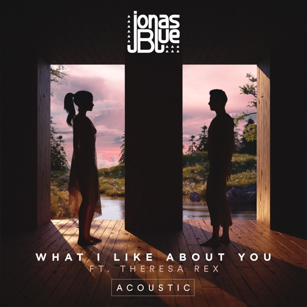 What I  Like About You (Acoustic) [feat. Theresa Rex] - Single