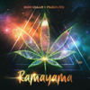 Don Omar & Farruko - Ramayama artwork